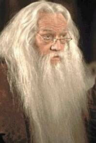 dumbledore_closeup.jpg